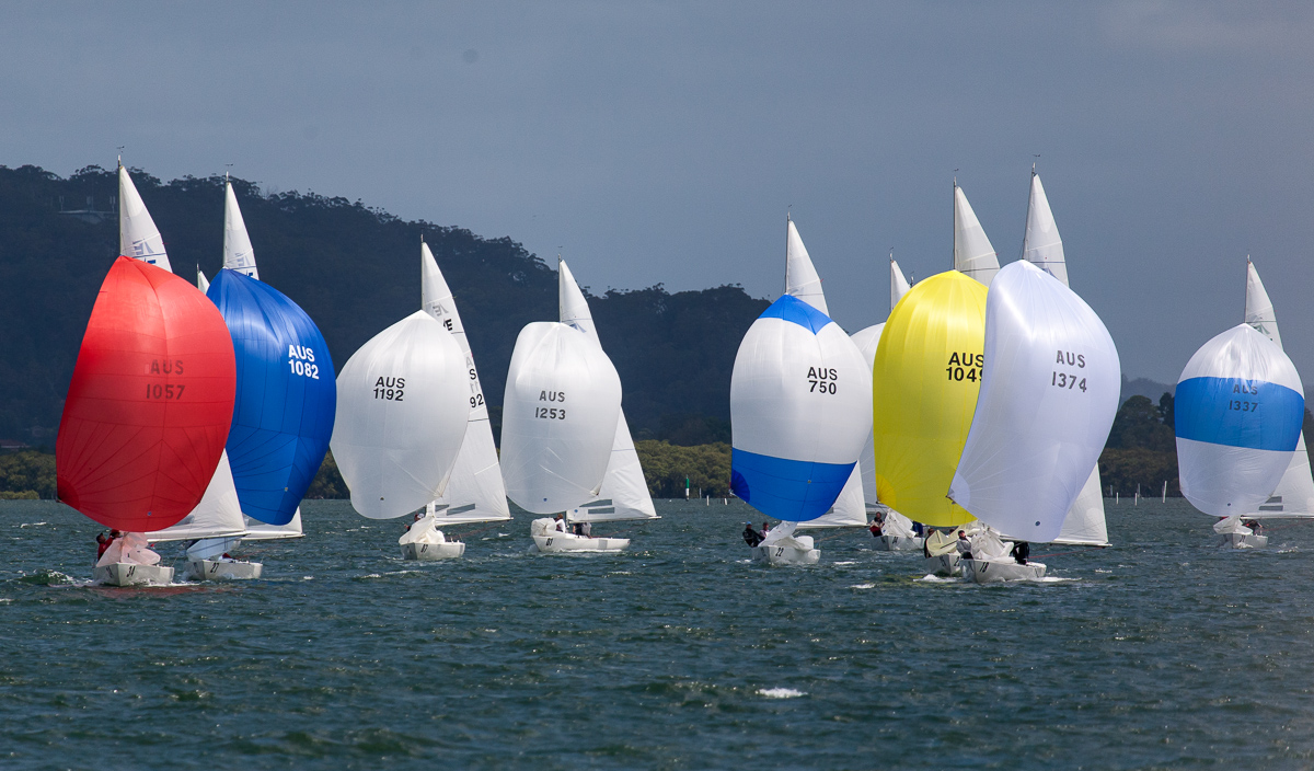 Part of the fleet coming back downwind on the picturesque Brisbane Waters